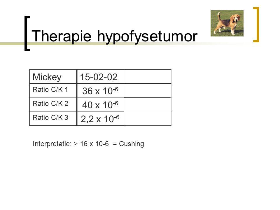 Therapie hypofysetumor
