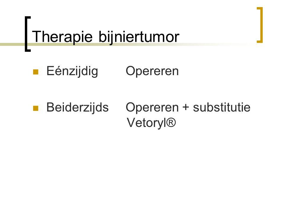 Therapie bijniertumor