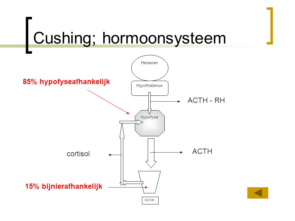 Cushing; hormoonsysteem
