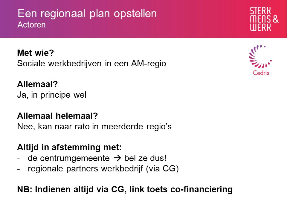 Een regionaal plan opstellen Actoren