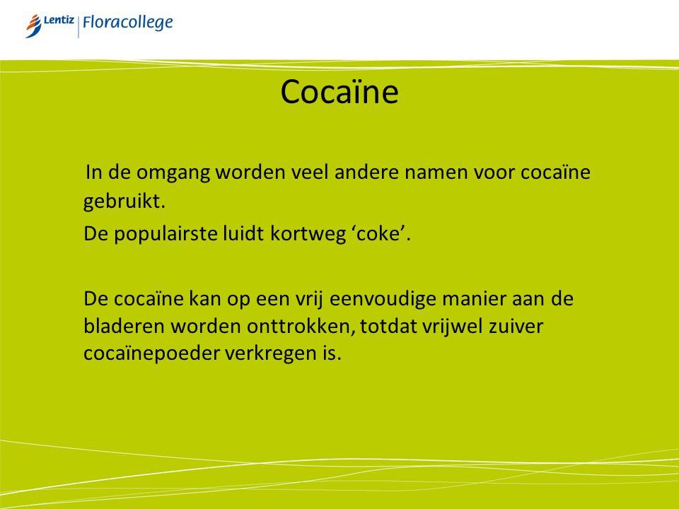 Cocaïne In de omgang worden veel andere namen voor cocaïne gebruikt.