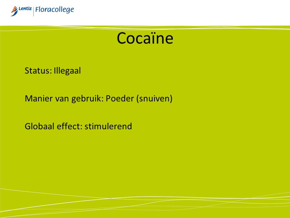 Cocaïne Status: Illegaal Manier van gebruik: Poeder (snuiven)