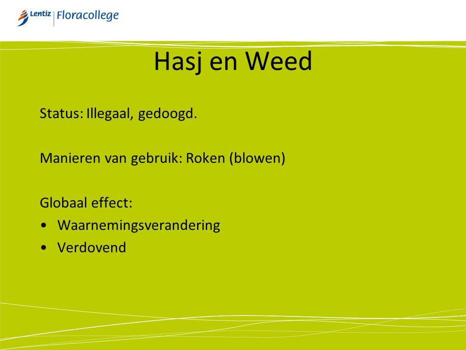Hasj en Weed Status: Illegaal, gedoogd.