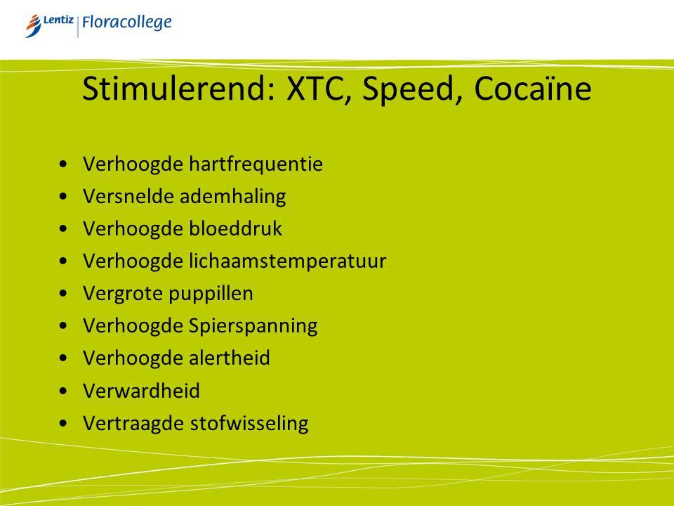 Stimulerend: XTC, Speed, Cocaïne