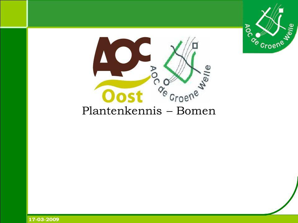 Plantenkennis – Bomen 17-03-2009