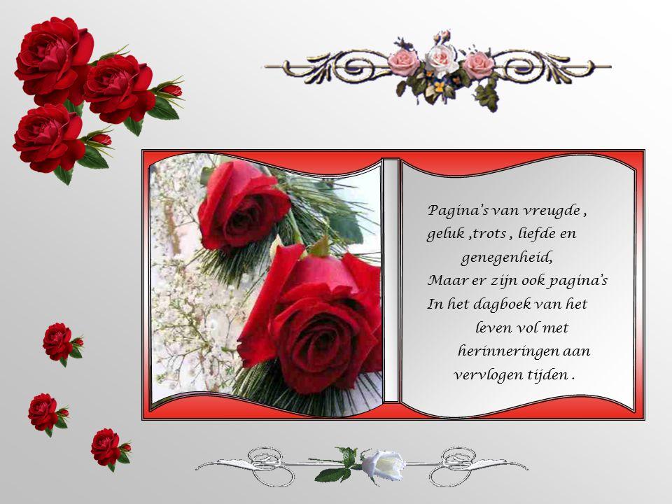 Pagina's van vreugde , geluk ,trots , liefde en. genegenheid, Maar er zijn ook pagina's. In het dagboek van het.