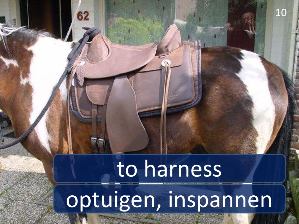 to harness optuigen, inspannen