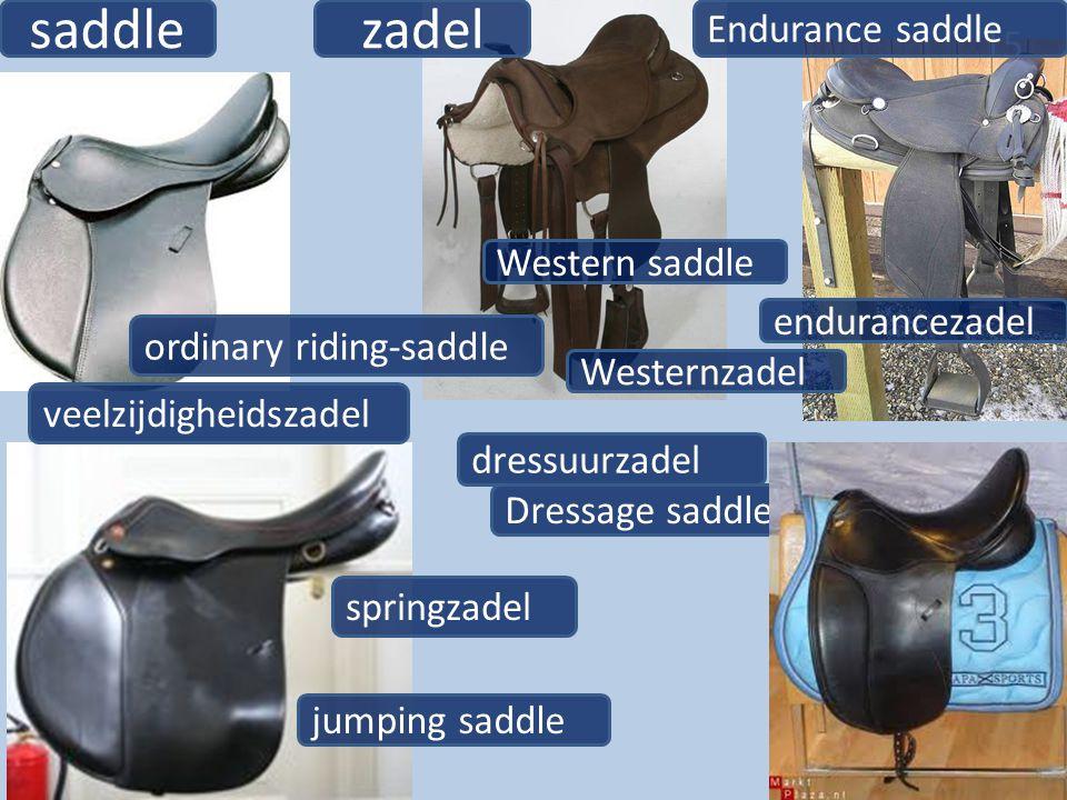 saddle zadel Endurance saddle Western saddle endurancezadel