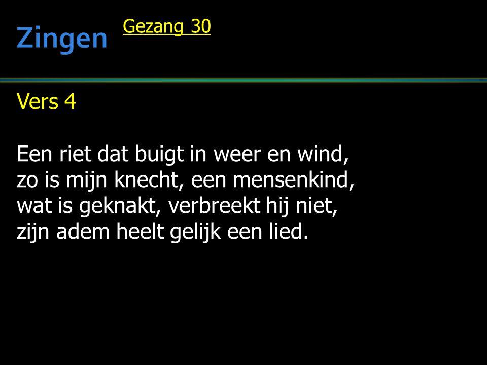 Zingen Vers 4 Een riet dat buigt in weer en wind,
