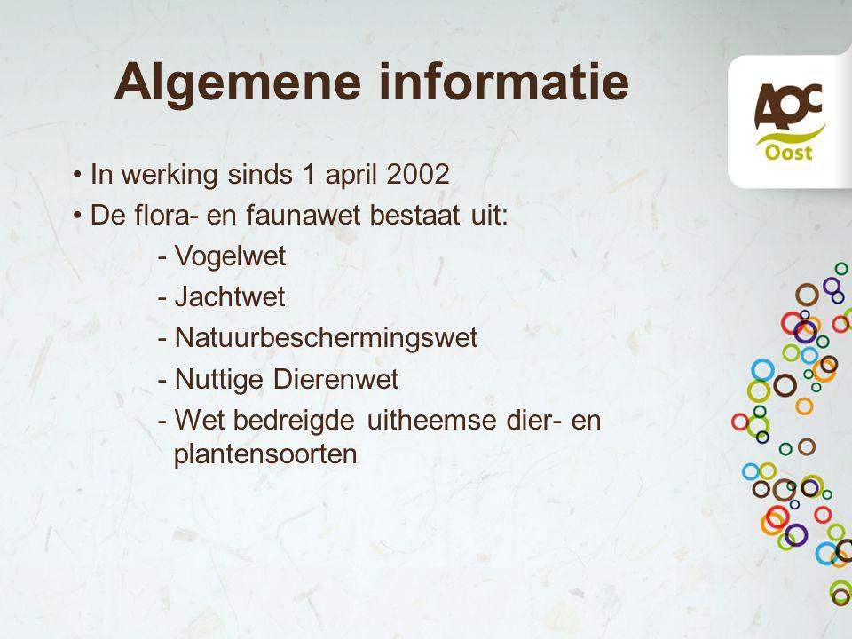 Algemene informatie In werking sinds 1 april 2002