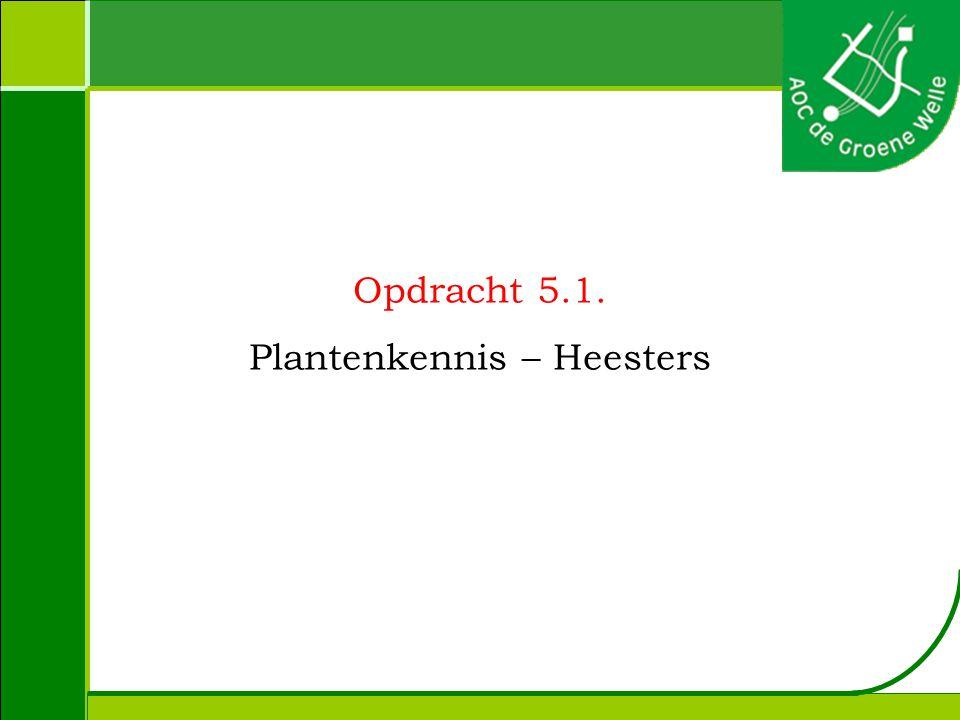 Plantenkennis – Heesters