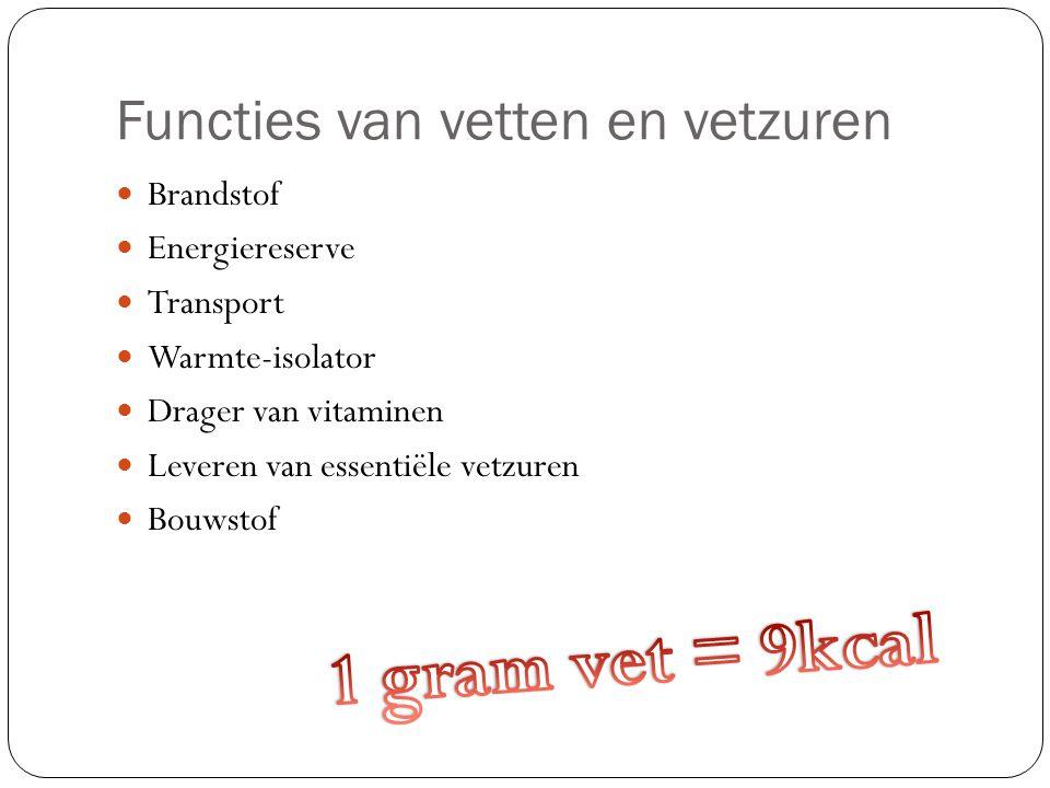Functies van vetten en vetzuren