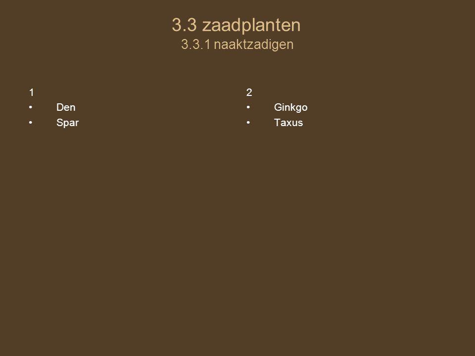 3.3 zaadplanten 3.3.1 naaktzadigen