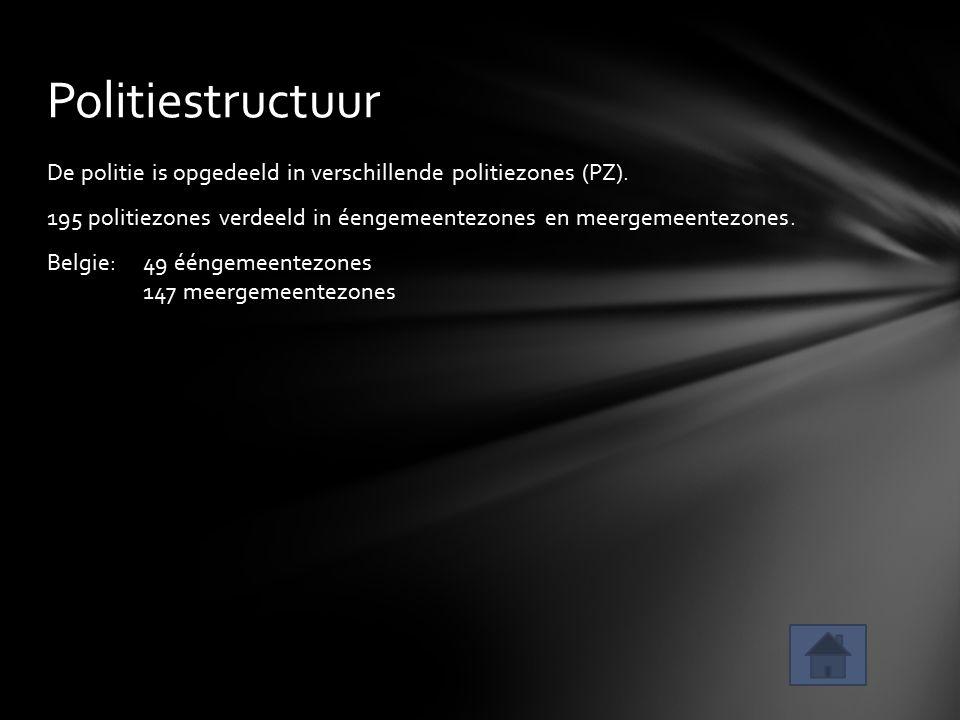 Politiestructuur