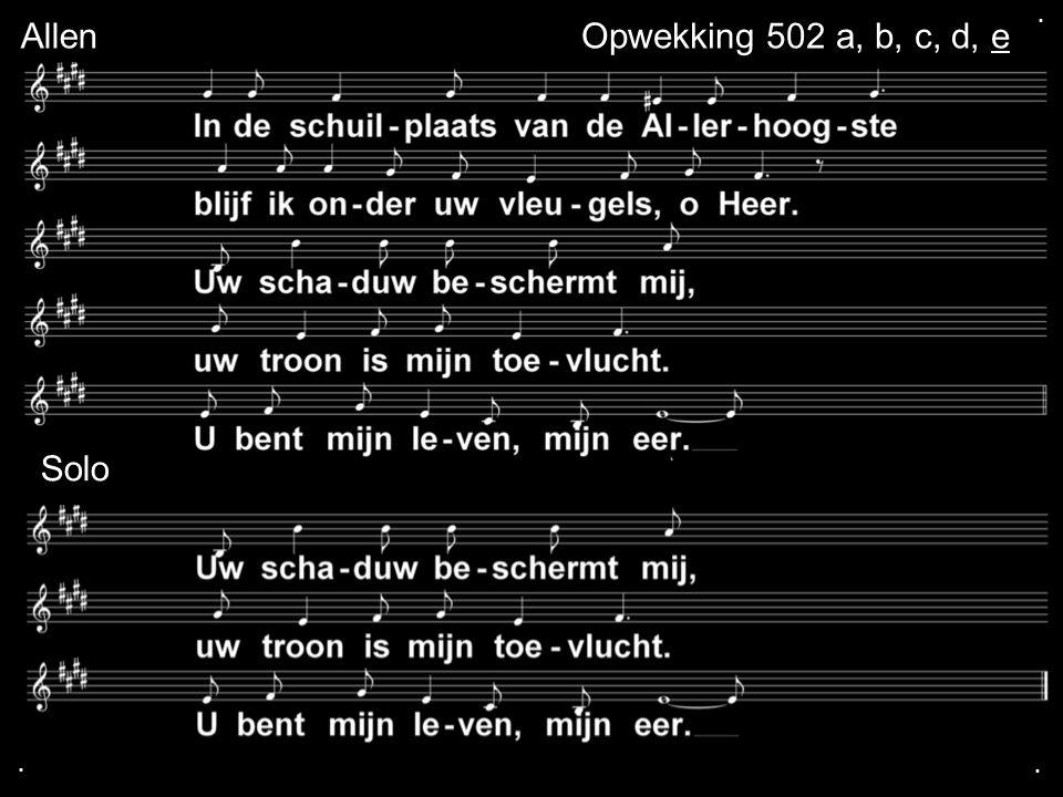 . Allen Opwekking 502 a, b, c, d, e Solo . .