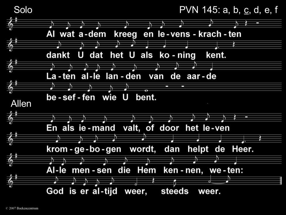 Solo PVN 145: a, b, c, d, e, f Allen