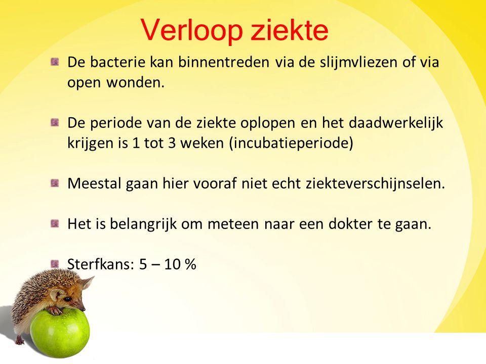 diarree water drinken