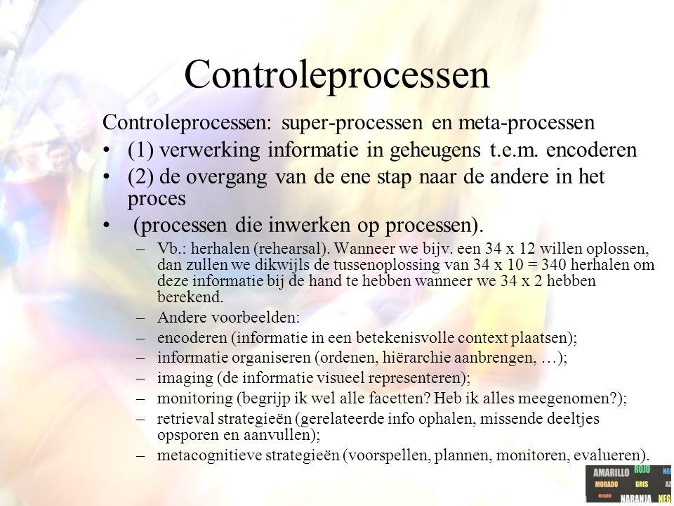 Controleprocessen Controleprocessen: super-processen en meta-processen