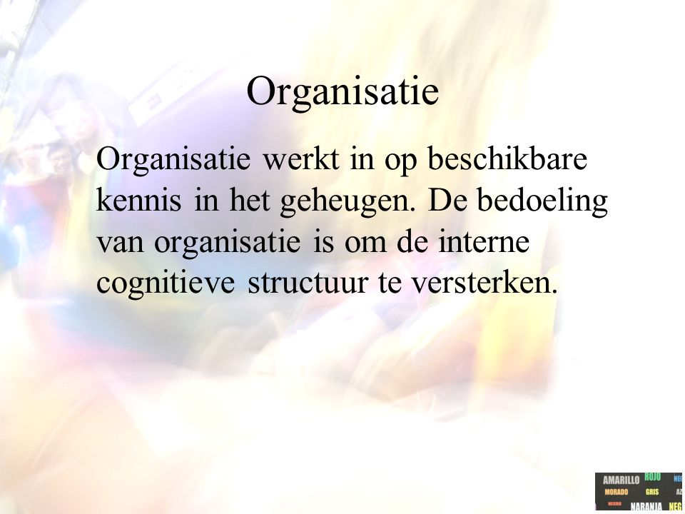 Organisatie