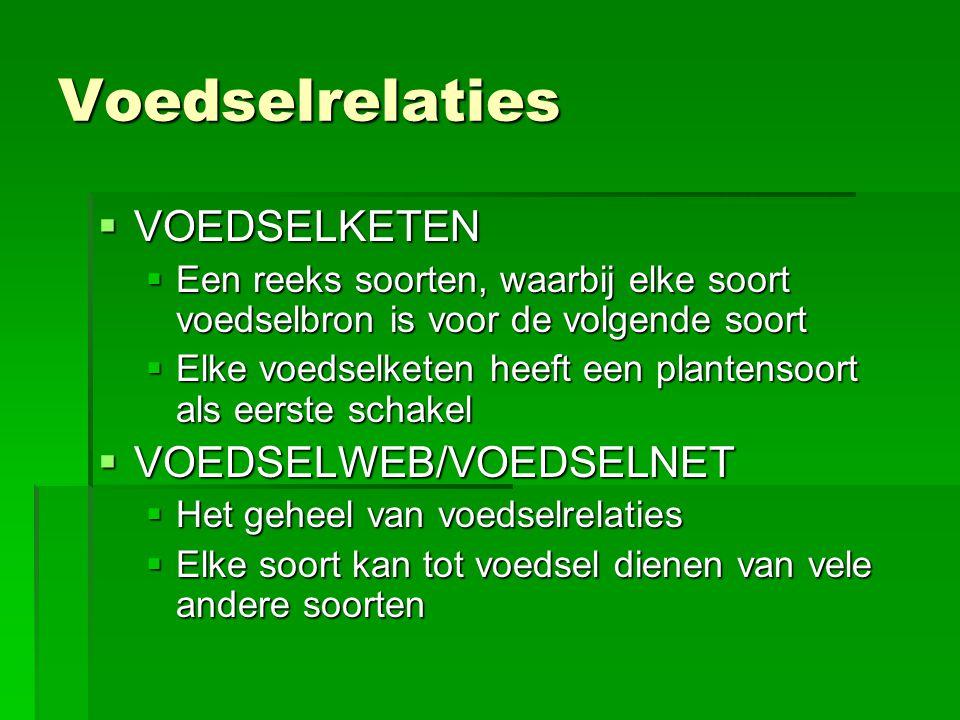Voedselrelaties VOEDSELKETEN VOEDSELWEB/VOEDSELNET
