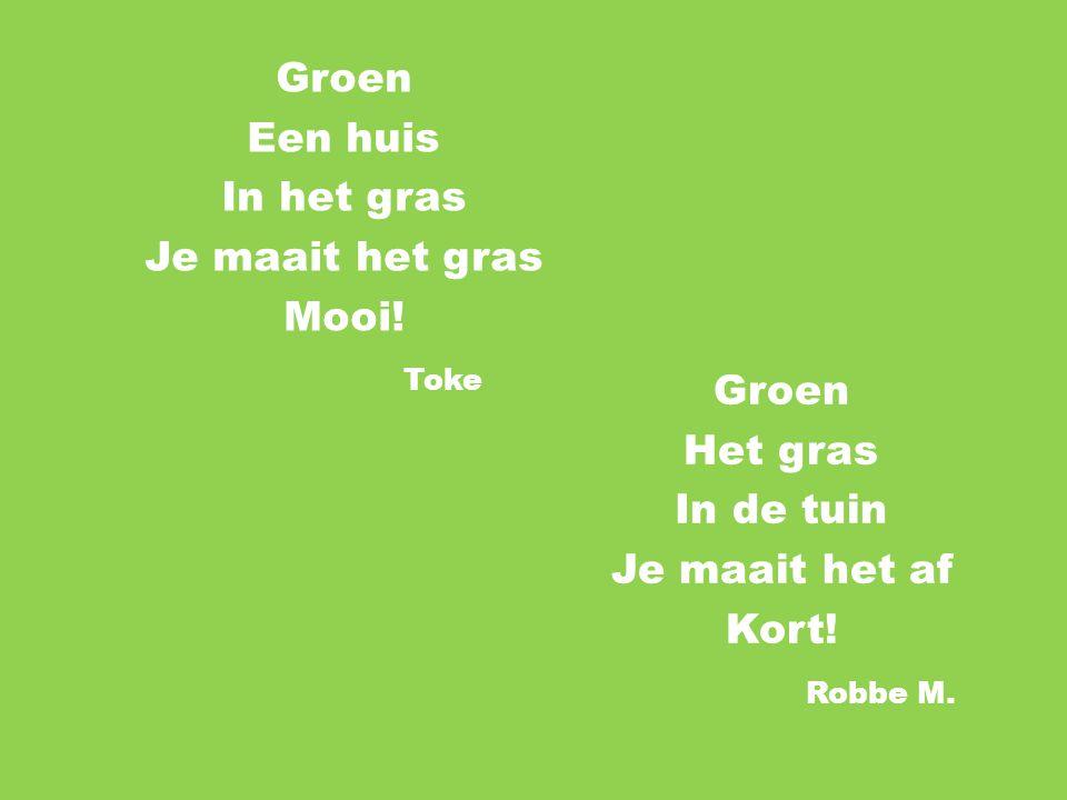 Groen Een huis. In het gras. Je maait het gras. Mooi! Toke. Groen. Het gras. In de tuin. Je maait het af.