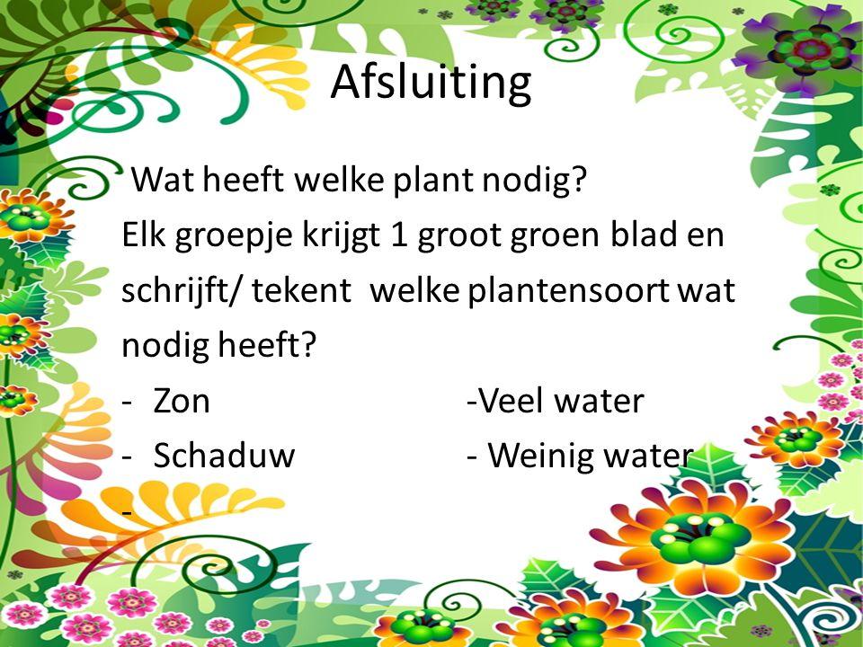 Afsluiting Wat heeft welke plant nodig