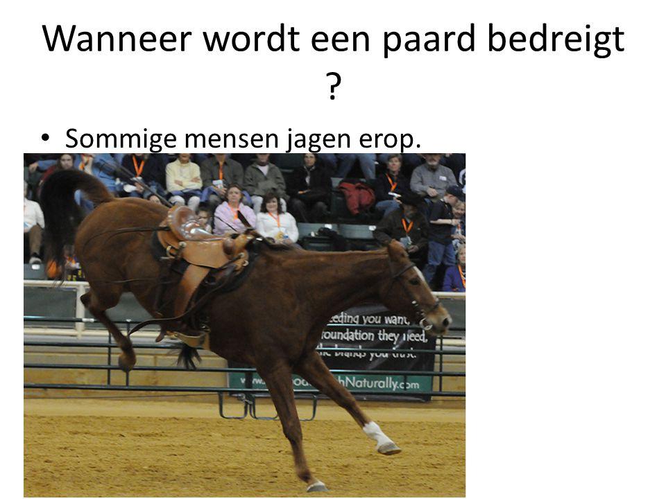 Wanneer wordt een paard bedreigt