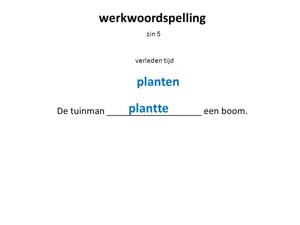 De tuinman ___________________ een boom.