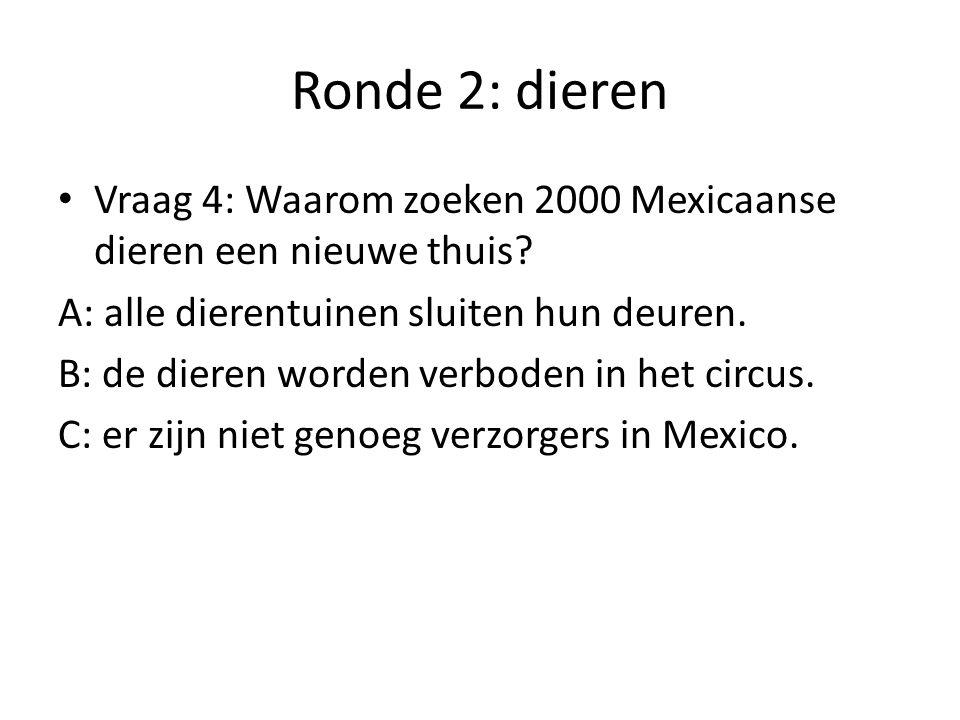 Ronde 2: dieren Vraag 4: Waarom zoeken 2000 Mexicaanse dieren een nieuwe thuis A: alle dierentuinen sluiten hun deuren.