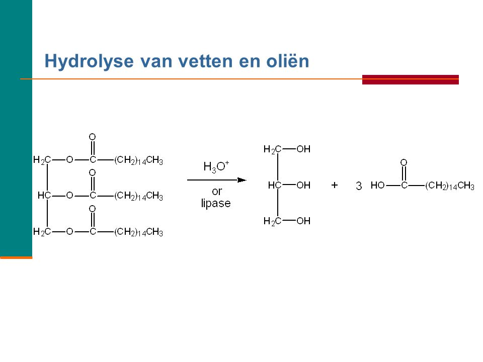 Hydrolyse van vetten en oliën