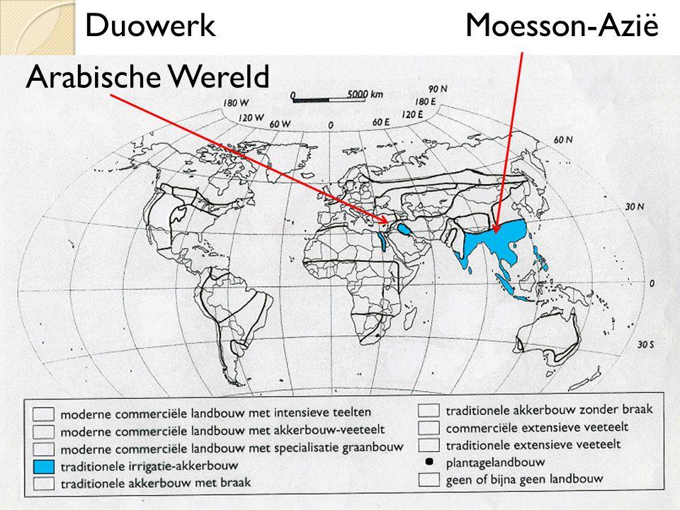 Duowerk Moesson-Azië Arabische Wereld