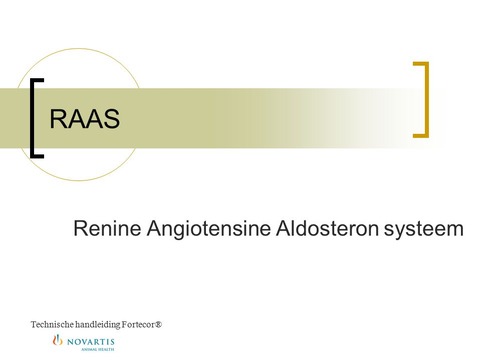 Renine Angiotensine Aldosteron systeem