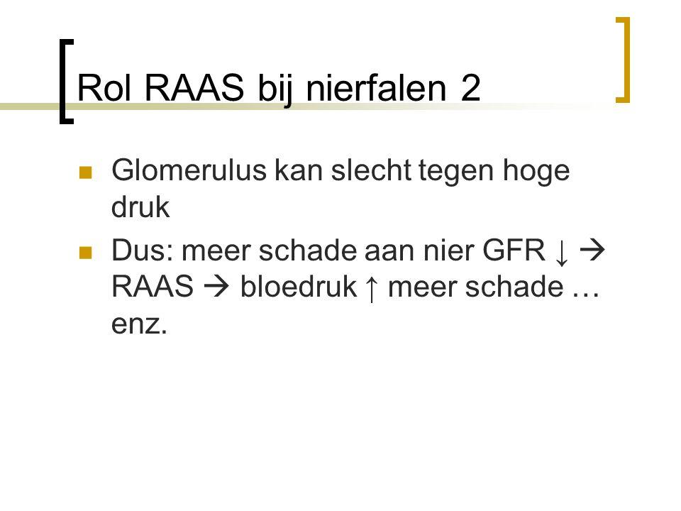 Rol RAAS bij nierfalen 2 Glomerulus kan slecht tegen hoge druk