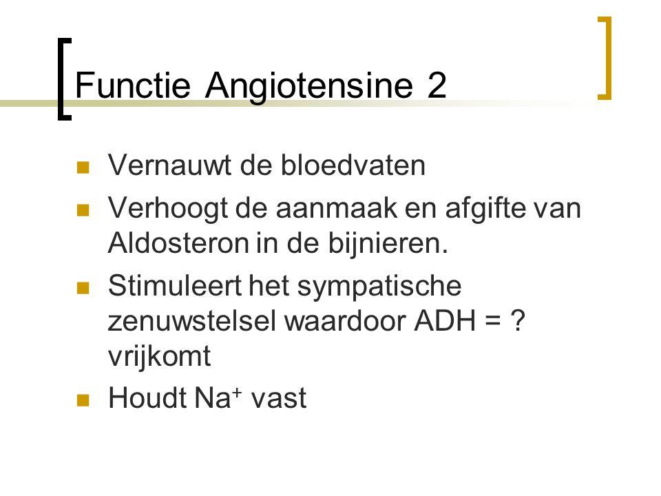Functie Angiotensine 2 Vernauwt de bloedvaten
