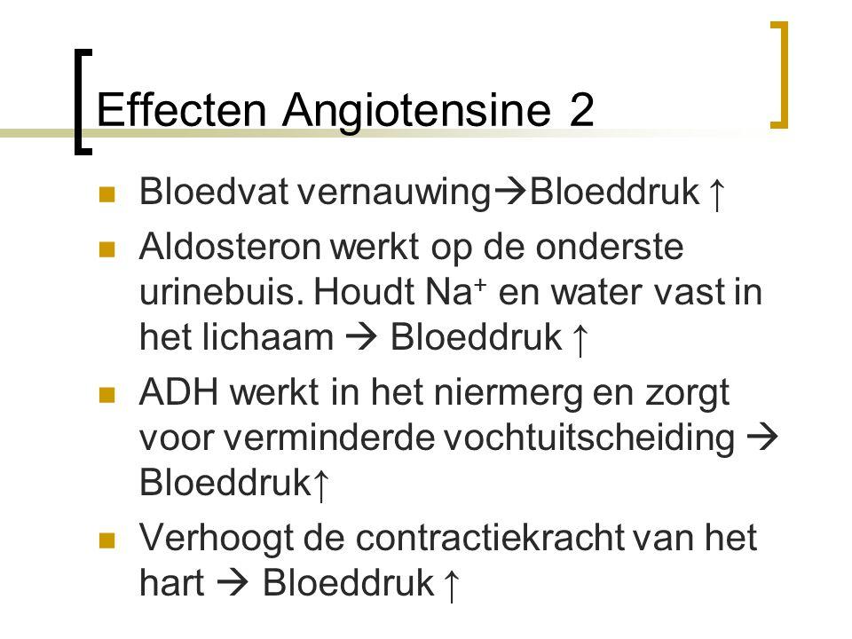 Effecten Angiotensine 2