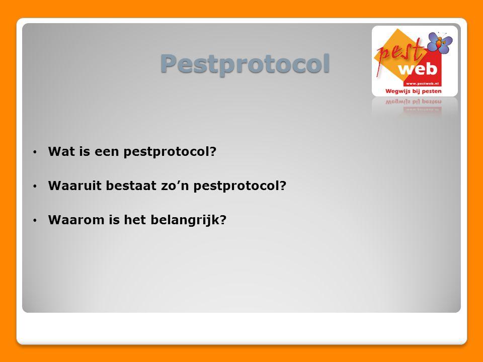 Pestprotocol Wat is een pestprotocol