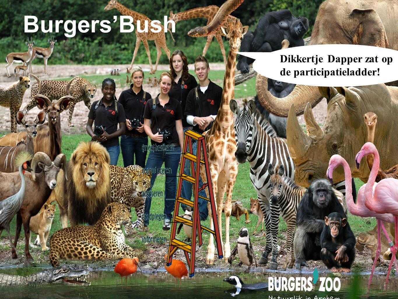 Burgers'Bush Dikkertje Dapper zat op de participatieladder!