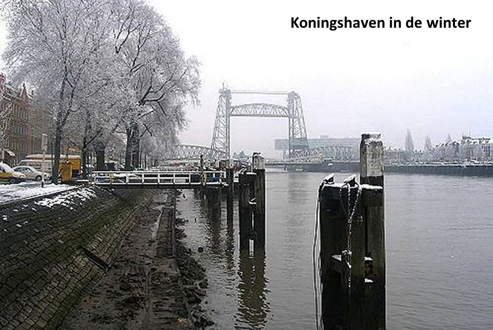 Koningshaven in de winter