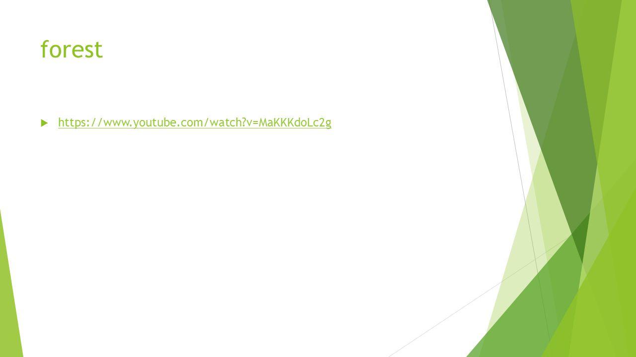forest https://www.youtube.com/watch v=MaKKKdoLc2g