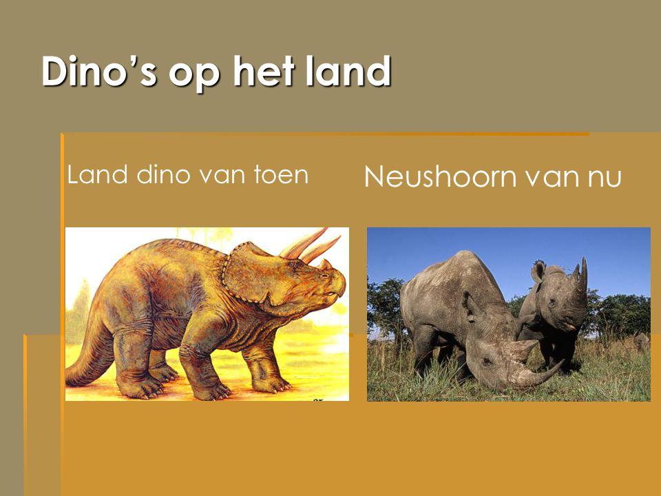 Dino's op het land Neushoorn van nu Land dino van toen