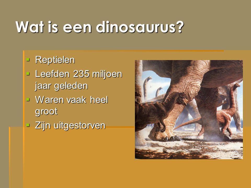 Wat is een dinosaurus Reptielen Leefden 235 miljoen jaar geleden
