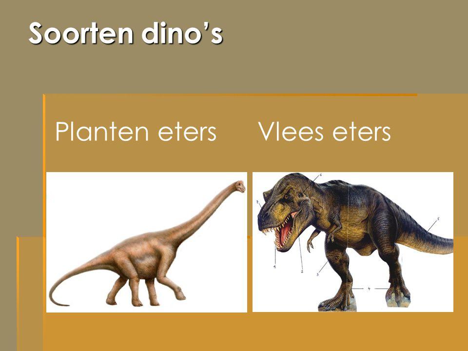 Soorten dino's Planten eters Vlees eters