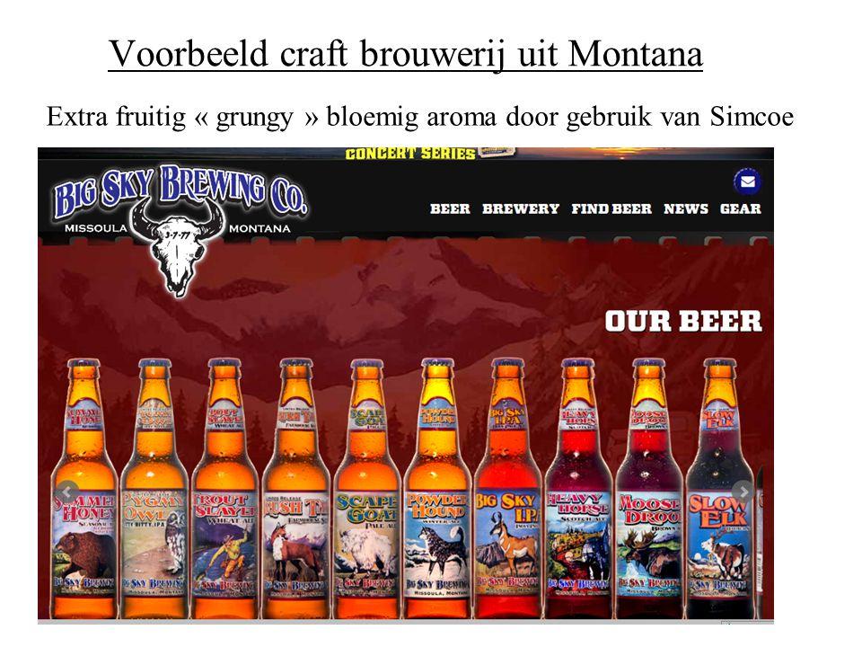 Voorbeeld craft brouwerij uit Montana