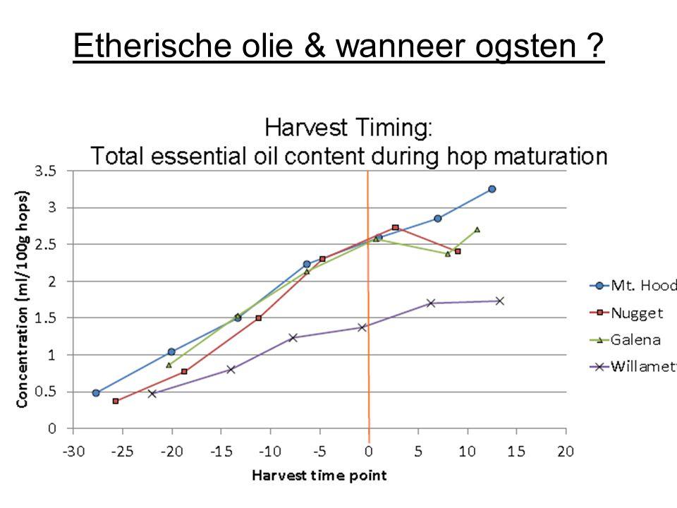 Etherische olie & wanneer ogsten