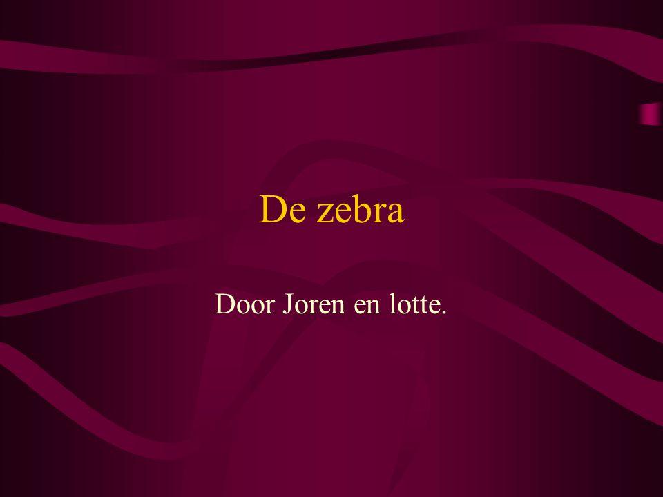 De zebra Door Joren en lotte.