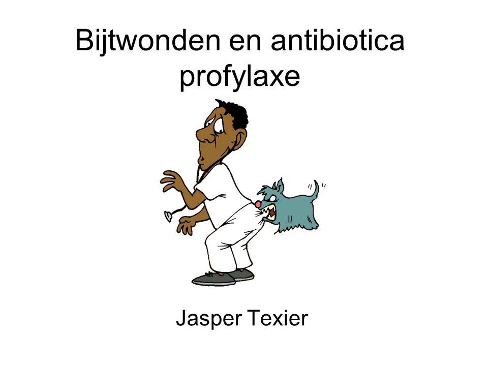 Bijtwonden en antibiotica profylaxe