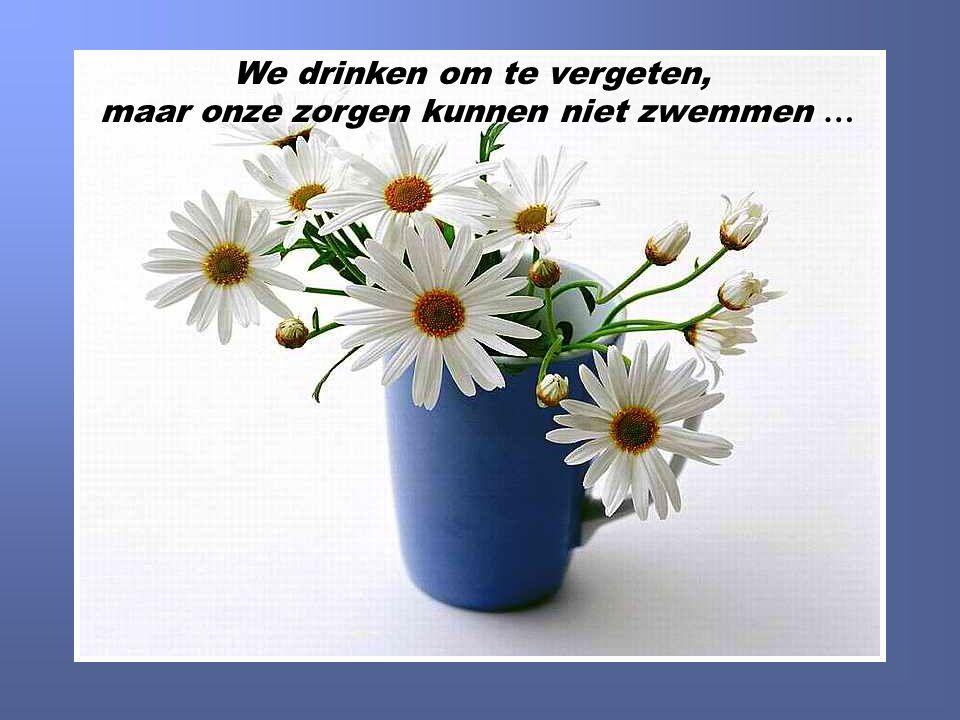 We drinken om te vergeten, maar onze zorgen kunnen niet zwemmen …