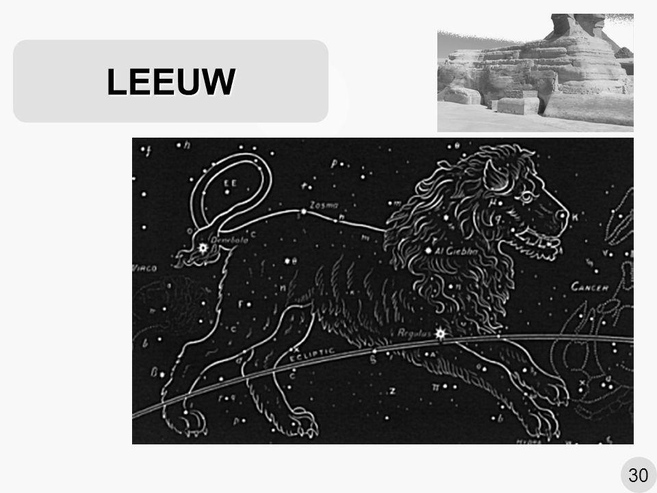 LEEUW 30