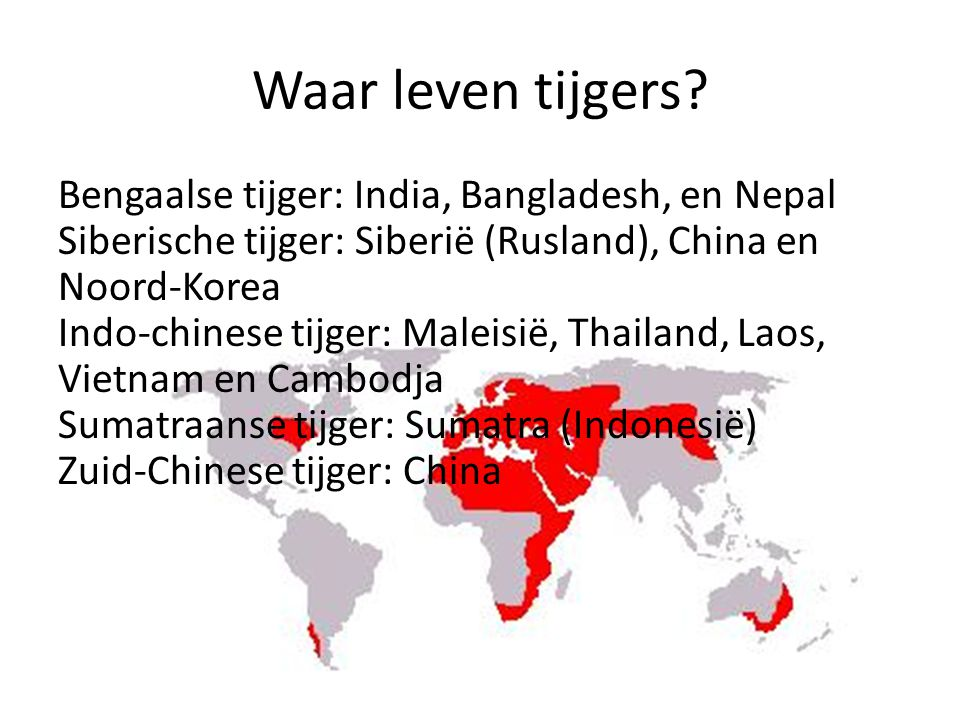 Waar leven tijgers