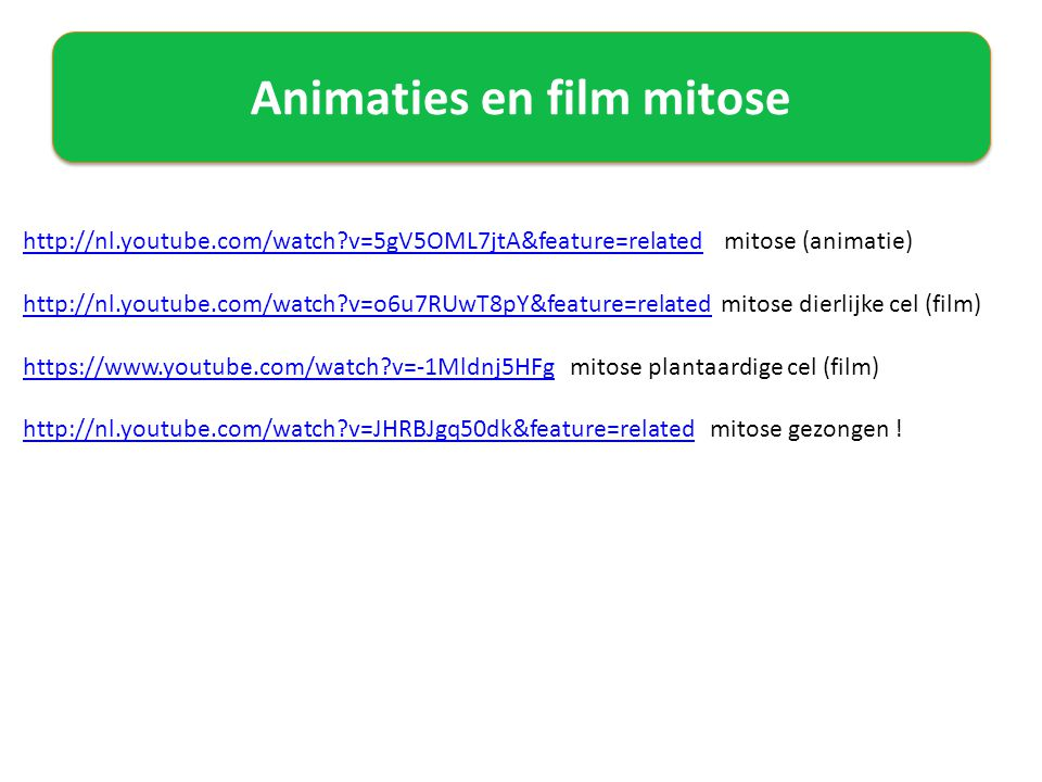 Animaties en film mitose
